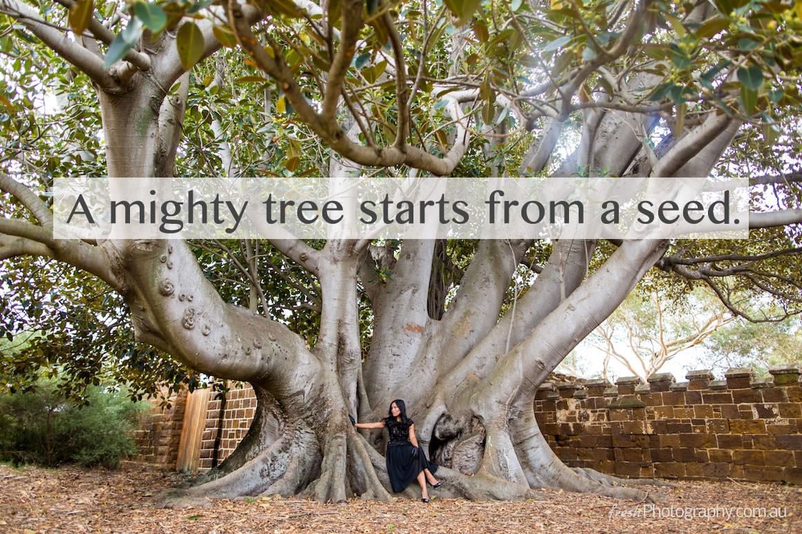 inspiring tree quote