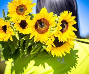 happiness-sunflowers