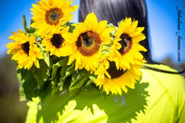 happiness-sunflowers