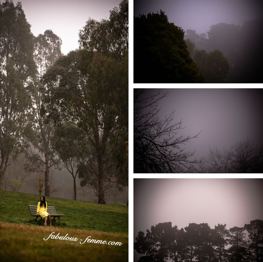melbourne australia - park fog