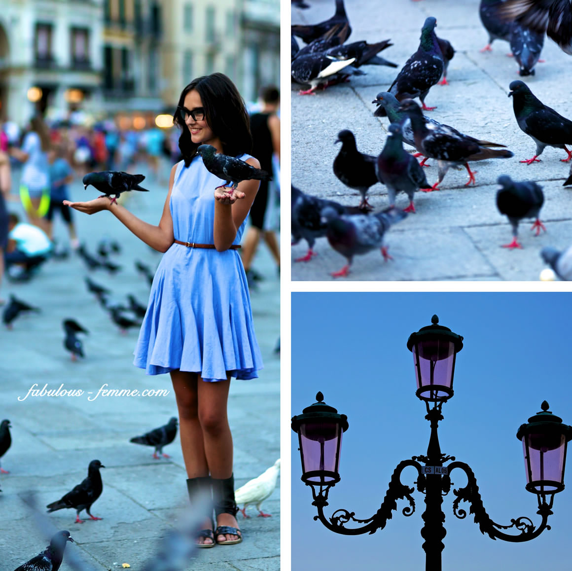 pigeons on pretty girl in venice