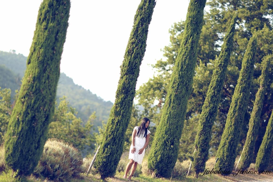 tuscany tree lines