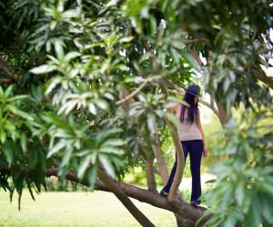 stand in mango tree