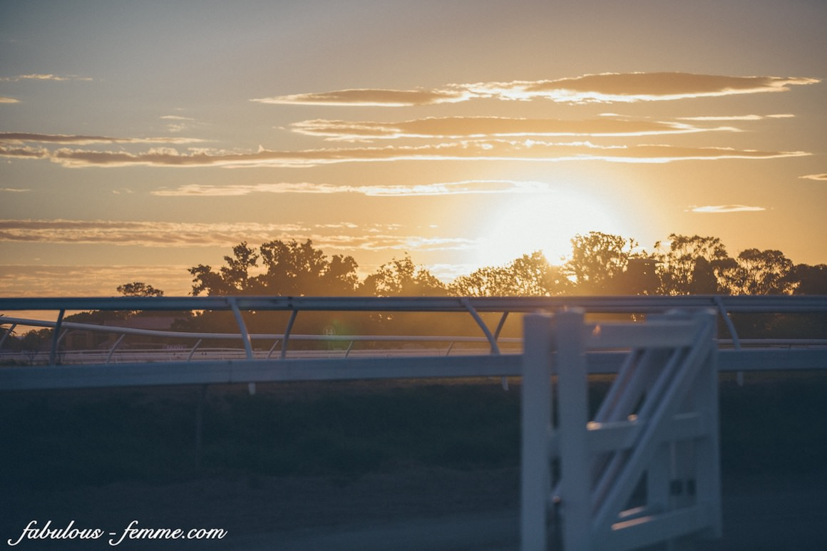 sunset at caulfield race track