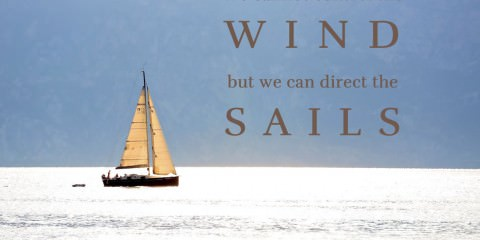 set the sails - we cannot control the wind - best quotes with photos