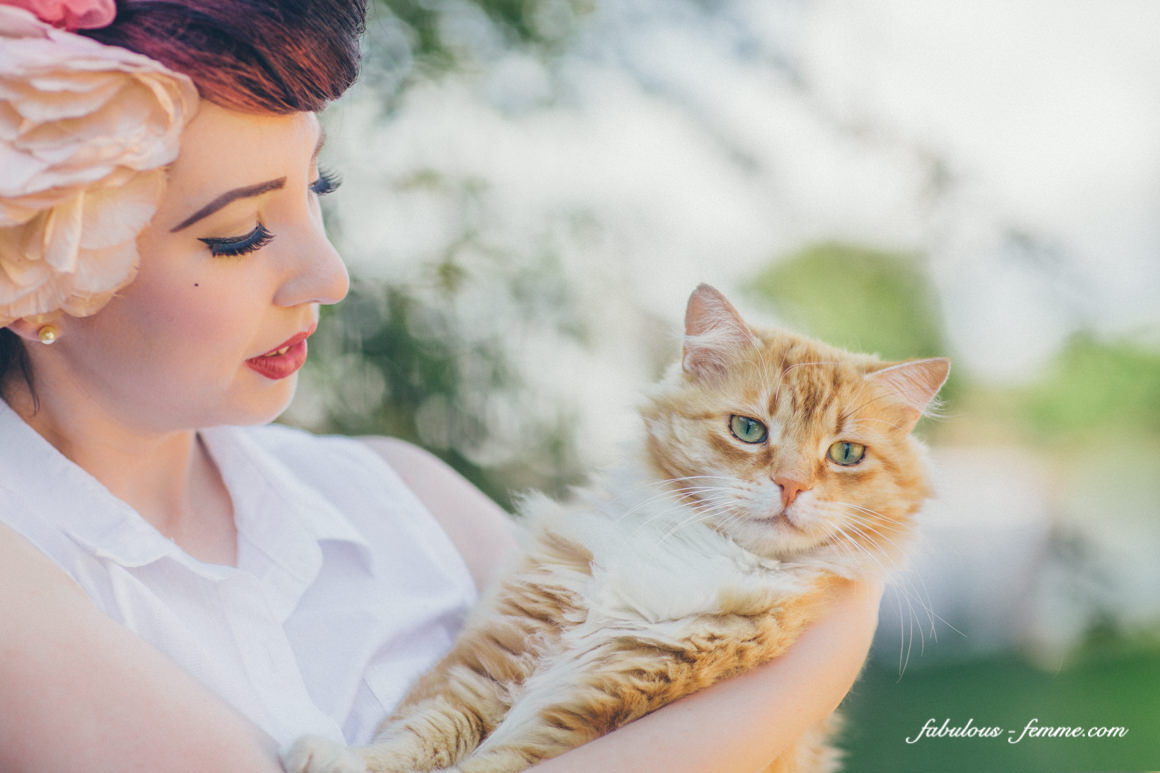 cat blog - pinup and vintage looks with cats