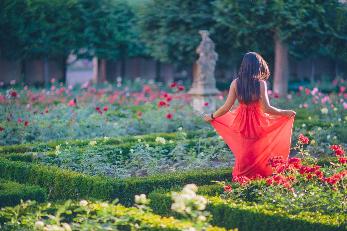 red dress in red roses - creative fashion photography - stylish