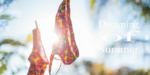 dreaming of summer - quote