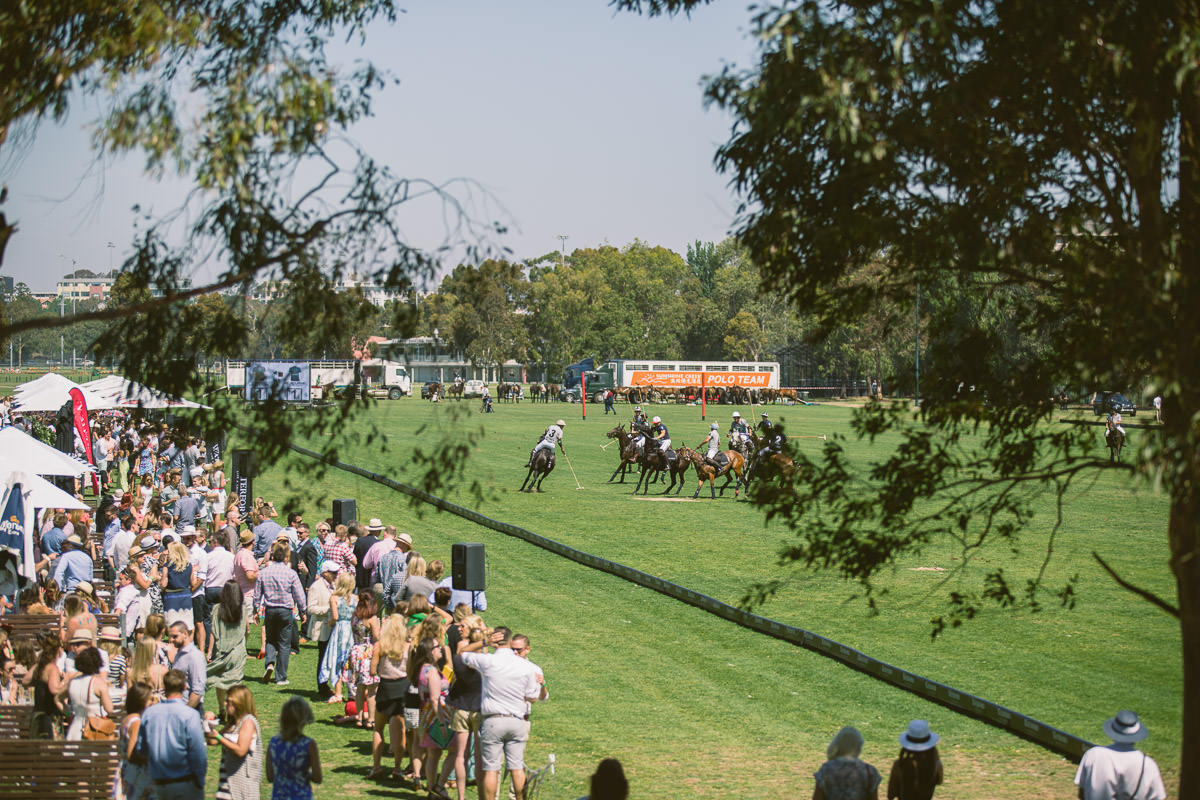 albert park - polo in the city melbourne
