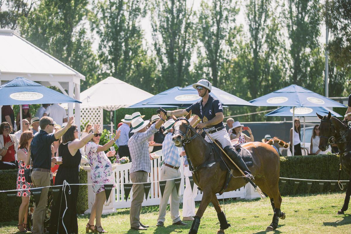 congratulations horse polo