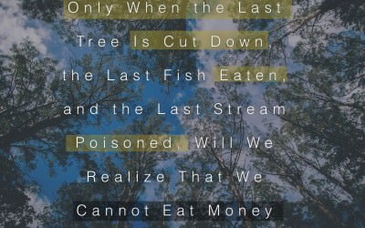 save the trees - picture quote - national tree day