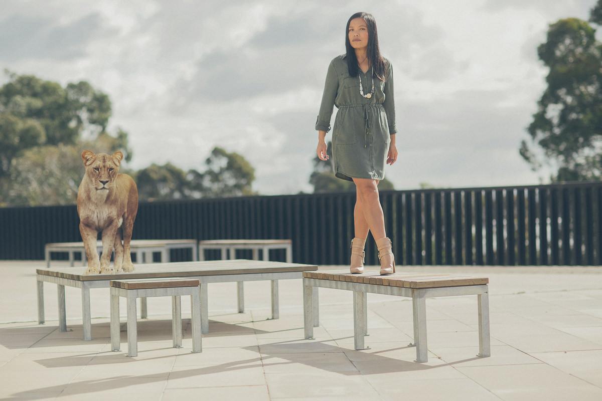 lion in photoshoot for fashion label - urban safari - stylish outfits