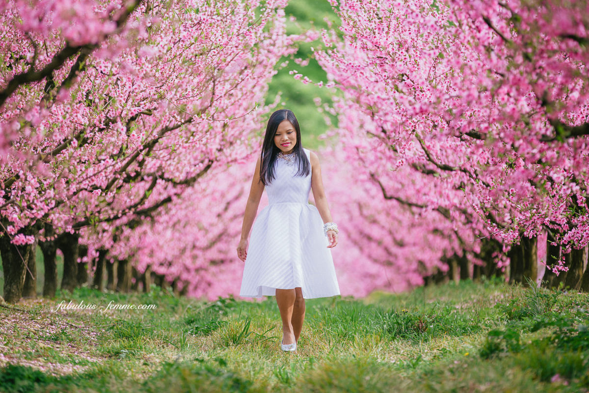 walking amongst a sea of blossom trees - japanese inspired photoshoot