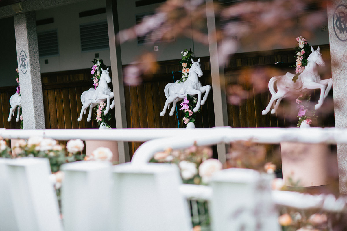 horses - stables - melbourne cup