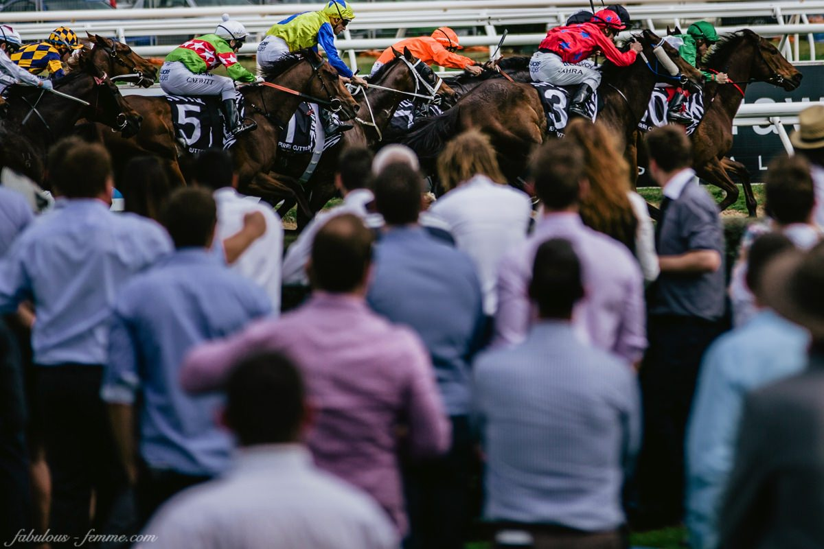 spring racing carnival - the first row at the events