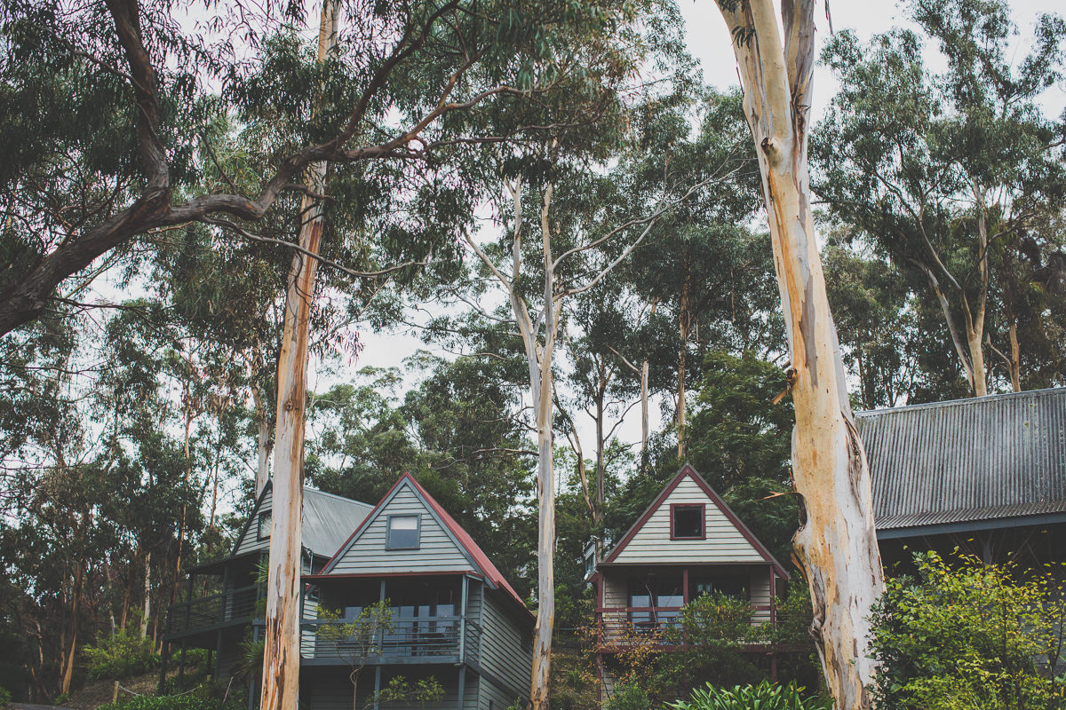 cabins in lorne - better than bed and breakfast