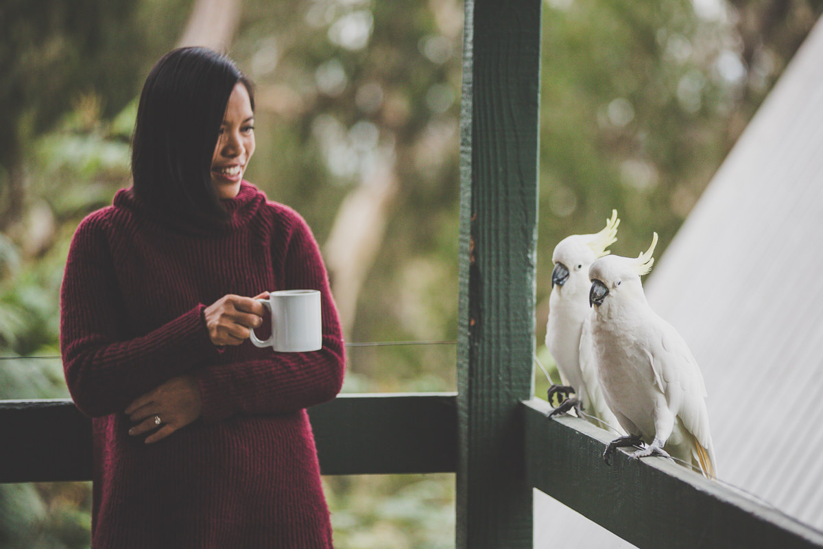 coffee break with cockatoos