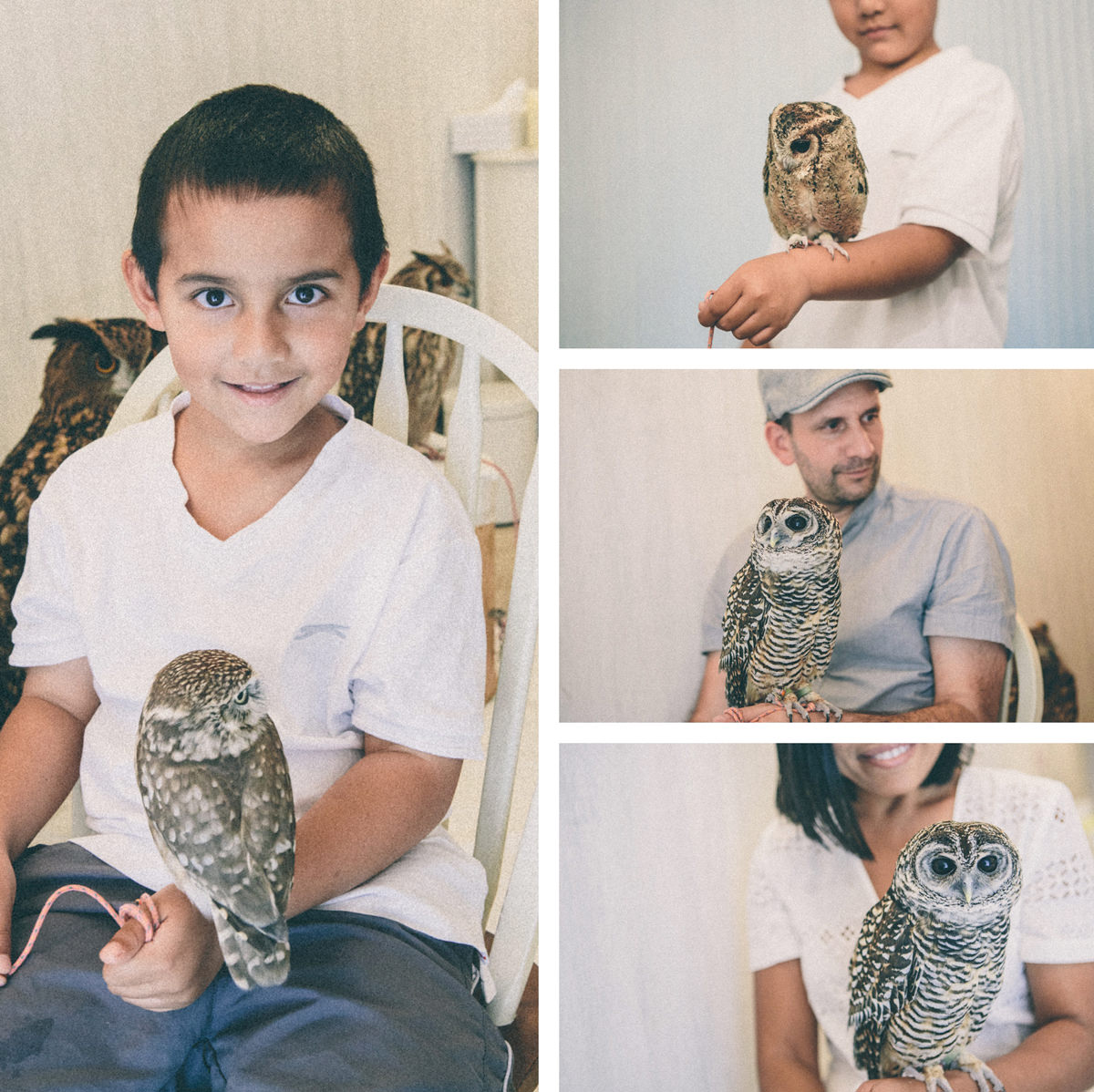little kid with owl on his hand - owl cafe tokyo