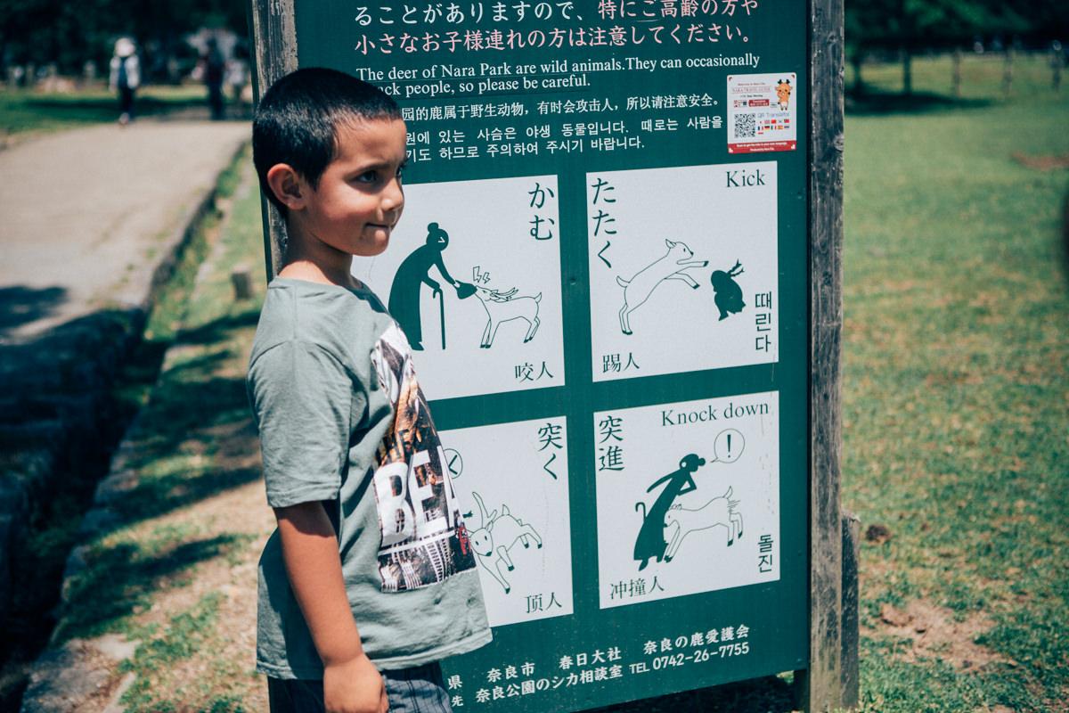 travel blogger in japan - sign in nara