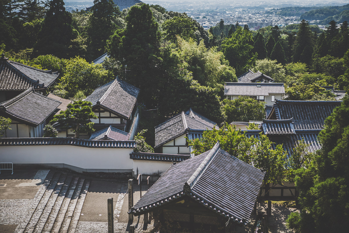 temple area in japan - nara