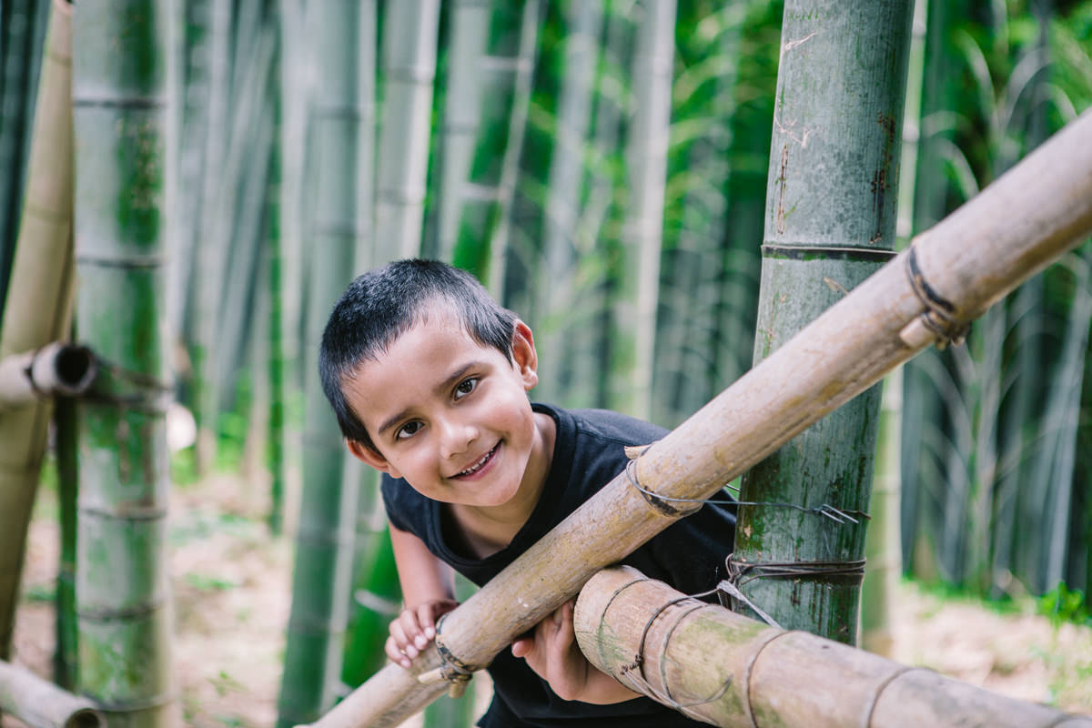 fun in the bamboo forest - travel experiences with kids
