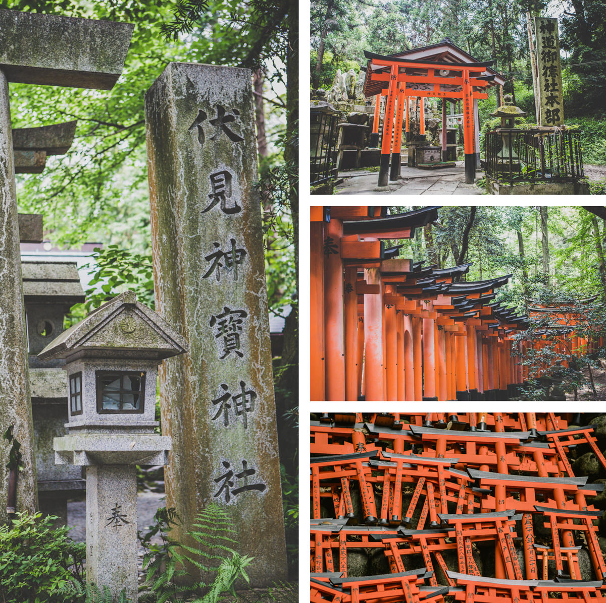 impressions of tempes in kyoto - travel photography