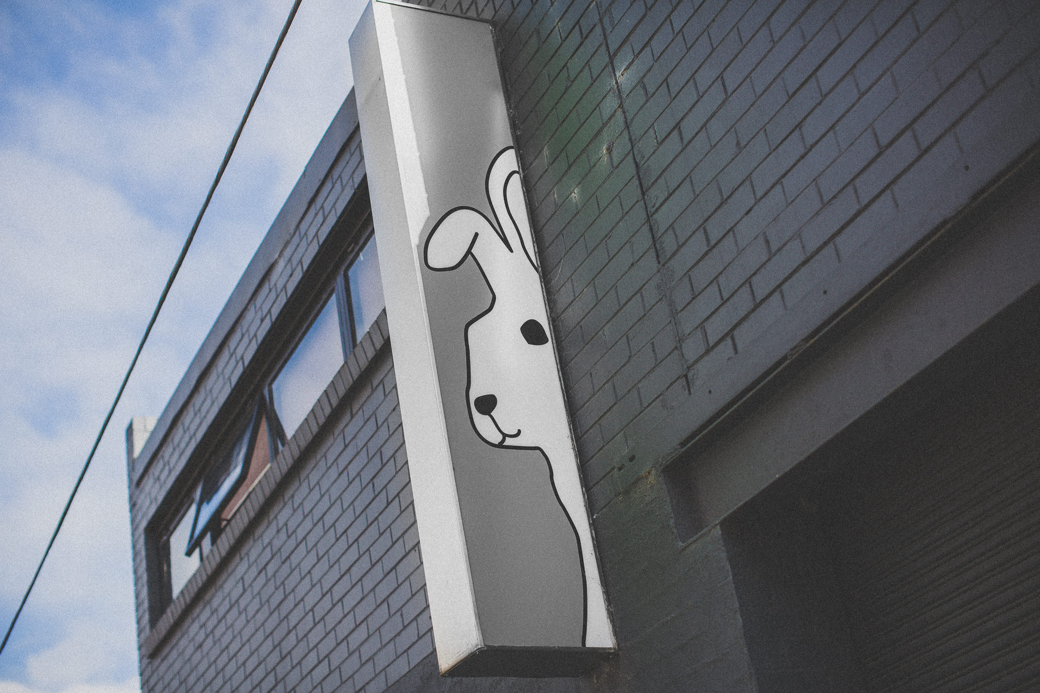 white rabbit wall art