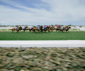 how to prepare for the Melbourne Spring Racing Carnival 2017
