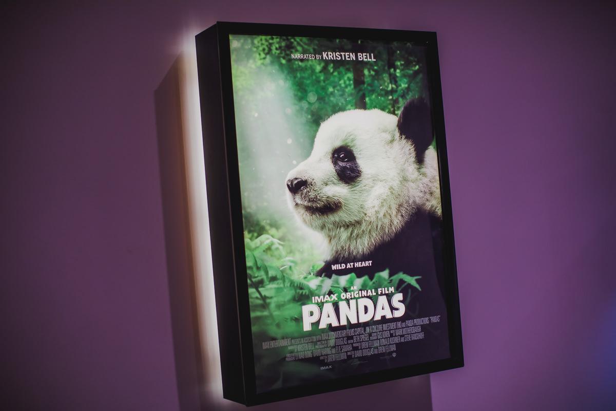 Pandas at Imax