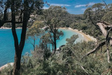 Refuge Cove in Wilsons Prom - Hiking Adventure