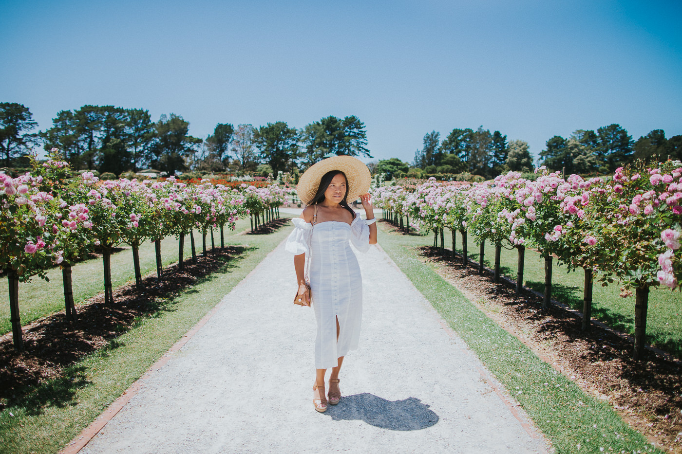 girl in rose garden - white puff sleeve dress