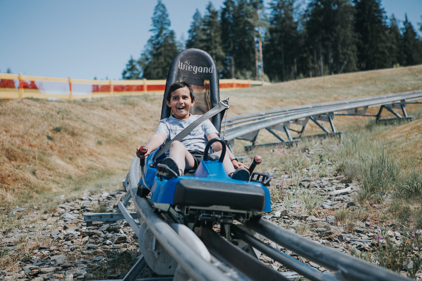 kid on summer sled - high speed fun