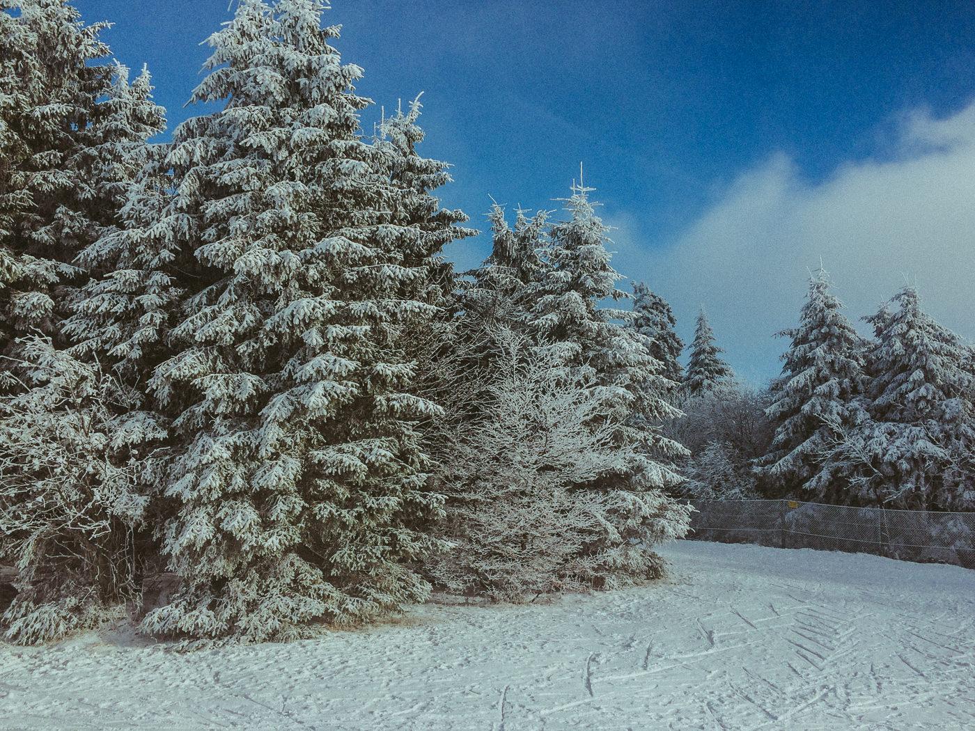 sunshine snow