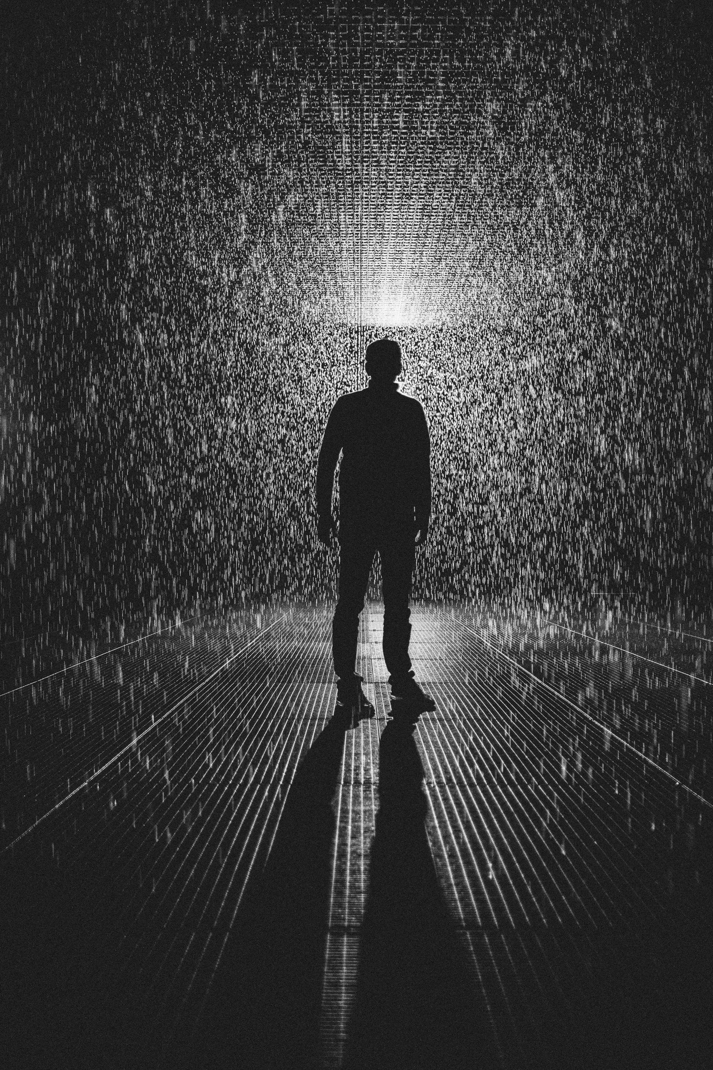 standing in the rain room - what to experience