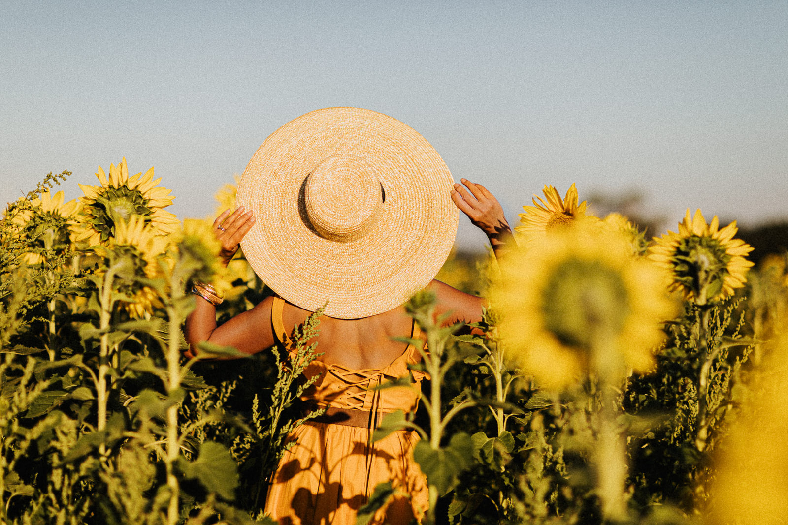 Girl with sunhat in sunflower field