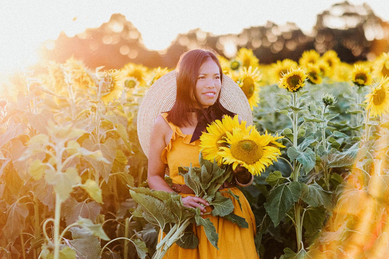 Sunflowerfield near Melbourne