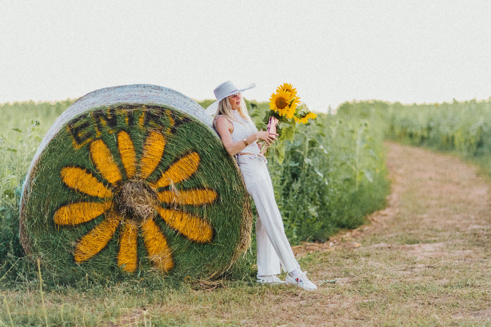 Dunnstown Sunflower
