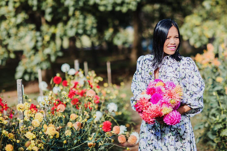 flower picking - Dahlias