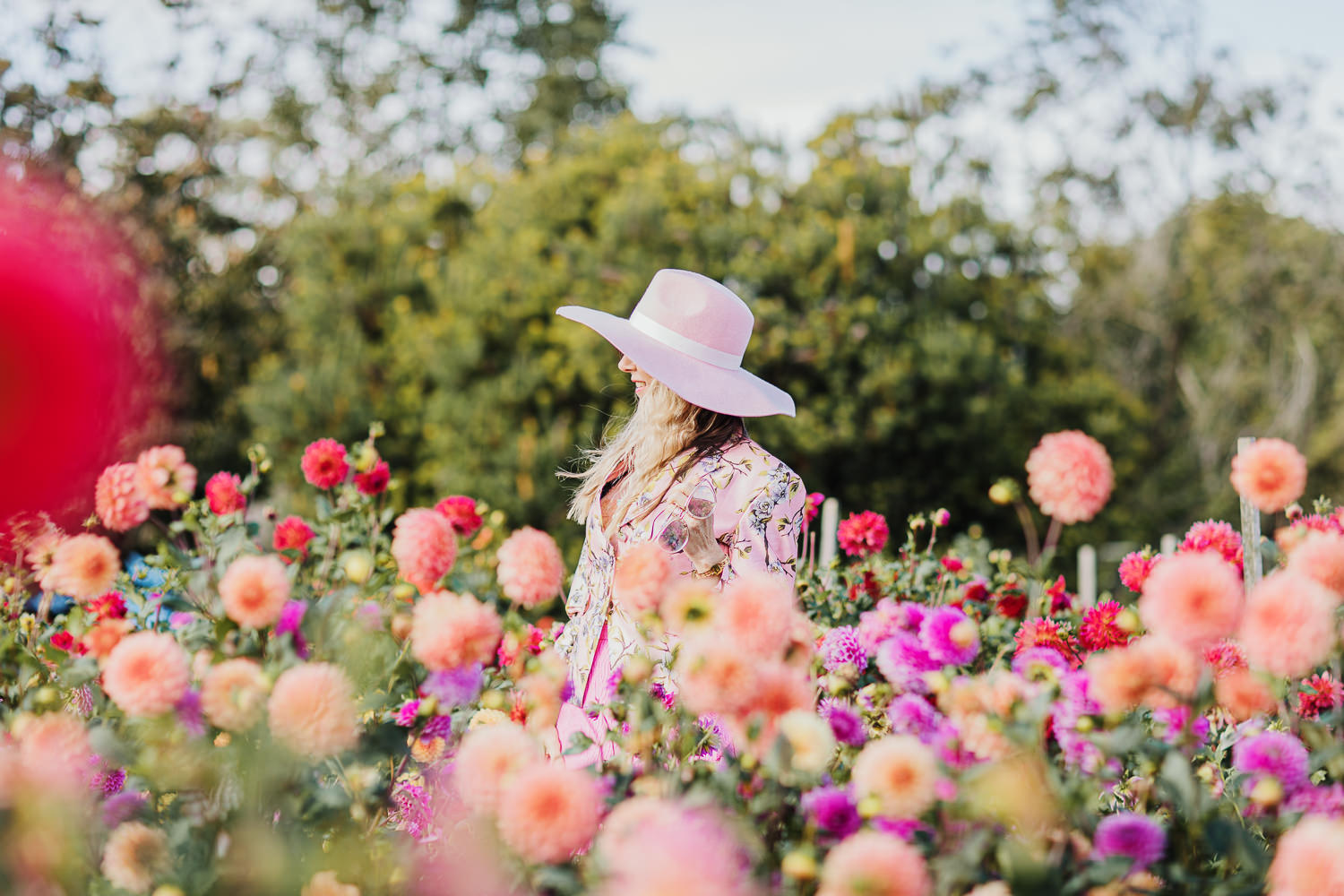 picking flowers near Melbourne